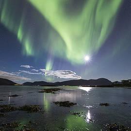 Frank Olsen - Green sky