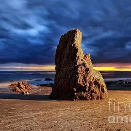 Charline Xia - Malibu Beach Rock