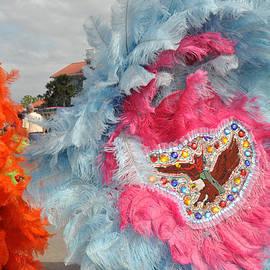 Diane Lent - Mardi Gras Indians