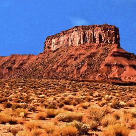 Bob and Nadine Johnston - National Navajo Tribal Park
