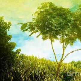 Amar Sheow - Ode to Monet