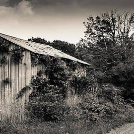 Old Abandoned Barn 2