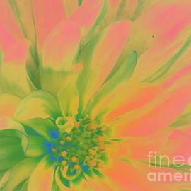 Photographic Art and Design by Dora Sofia Caputo - Pink and Green Dahlia Pop Art