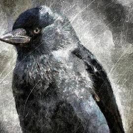 Gun Legler - Raven