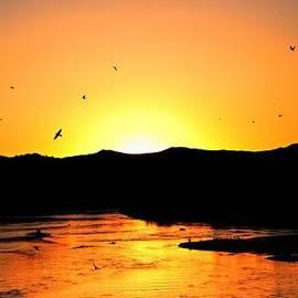 Tony Lopez - Rio Grande Sunset