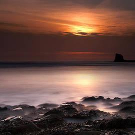 Svetlana Sewell - Saltwick Bay