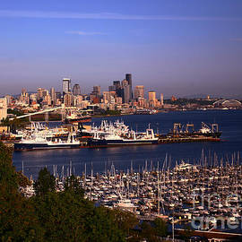 Patricia Betts - Seattle Skyline