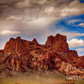 Janice Rae Pariza - Shiprock New Mexico