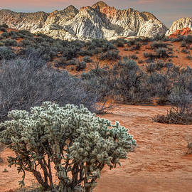 Utah Images - Snow Canyon State Park Utah