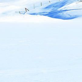 Theresa Tahara - Snow Diamonds
