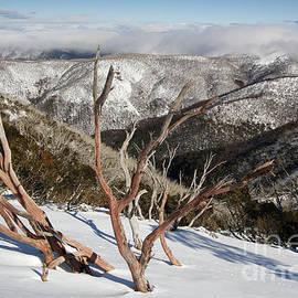 John Wallace - Snow on the mountainside