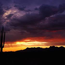 Saija  Lehtonen - Sonoran Skies