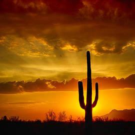 Saija  Lehtonen - Southwestern Style Sunset