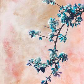 Viaina     - Springtime