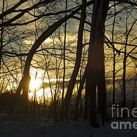Elaine Mikkelstrup - Sunrise