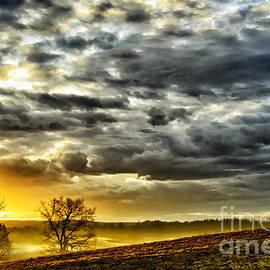Thomas R Fletcher - Sunrise Grazing