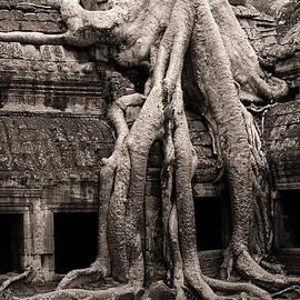 Artur Bogacki - Ta Prohm Temple in Cambodia