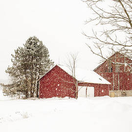 Nick Mares - The red barn