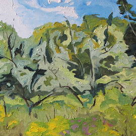 Francois Fournier - The Wild Orchard