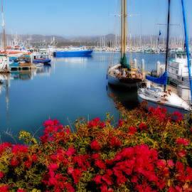 Lynn Bauer - Ventura Harbor