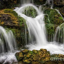 Carlos Caetano - Waterfall
