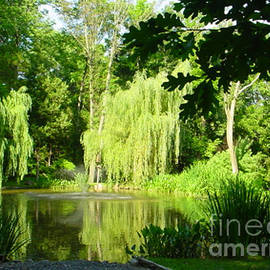 Lyric Lucas - Weeping Willow Pond