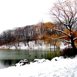 Photographic Art and Design by Dora Sofia Caputo - Winter by the Lake