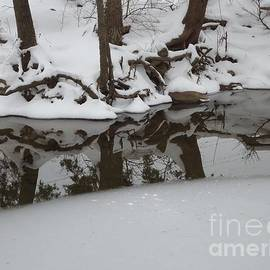 Tashia  Summers  - Winter reflections