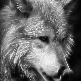 Athena Mckinzie - Wolf Eyes