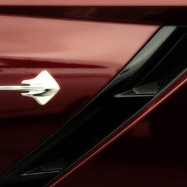 Thomas Woolworth - 2014 Corvette StingRay Emblem