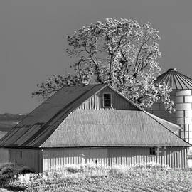 Rick Grisolano Photography LLC - 2014 May Evening on the Barn No 1 BW-01