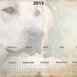 Eleanor Abramson - 2015 Yellow Lab Wall Calendar