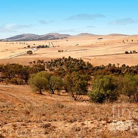 John Wallace - A Dry Australian Landscape