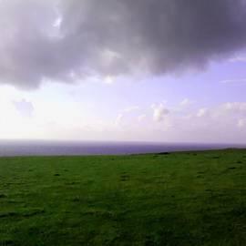 Cris Andrews - Coastal Pastures