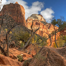 Utah Images - Zion National Park Utah