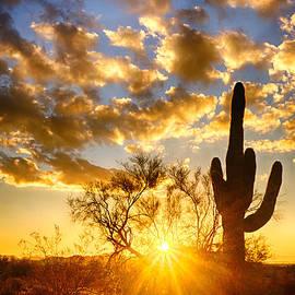 Saija  Lehtonen - A Desert Sunrise