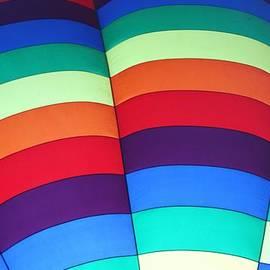 Allen Beatty - Balloon Fantasy 35