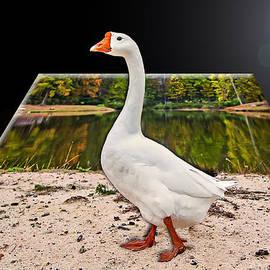 Susan Whitaker - 3 D White Goose