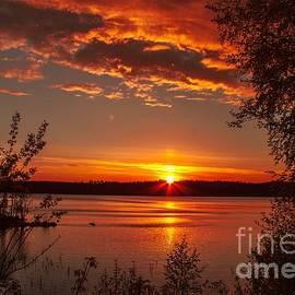 Rose-Maries Pictures - Finnskogen Norway