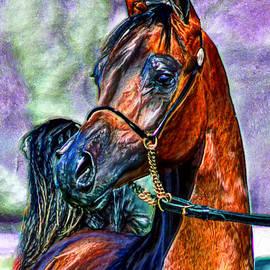 Bruce Nutting - Superb Stallion