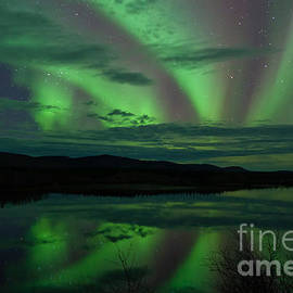 Stephan Pietzko - Night Sky Stars Clouds Northern Lights mirrored