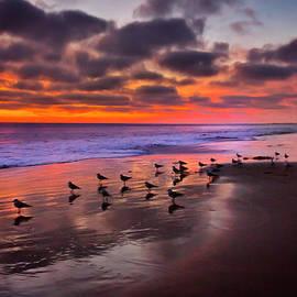 Ken Wolter - Pacific Sunset