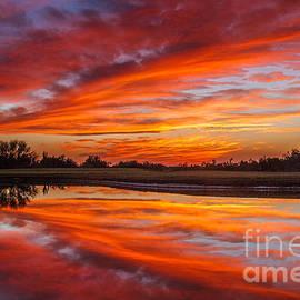 Robert Bales - Sunset Reflections