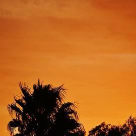 Werner Lehmann - Sunset