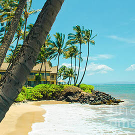 Sharon Mau - Tropical Paradise