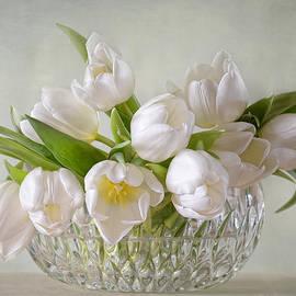 Steffen Gierok - Tulips
