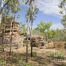 Martin Berry - Ubirr Kakadu Australia