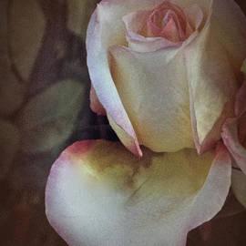 Richard Cummings - Vintage Rose