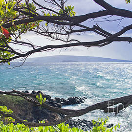 Sharon Mau - Wailea Point Maui Hawaii