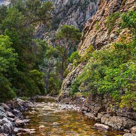 Utah Images - Wasatch Mountains Utah